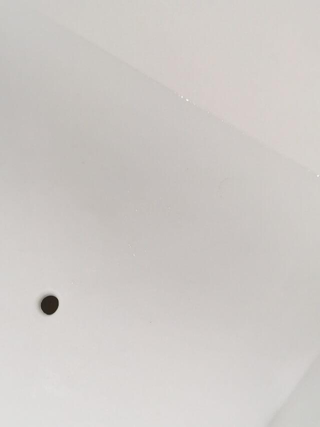 水切りバスケットの黒カビ除去成功